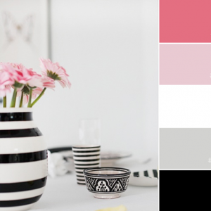 Color Love | Black, White & Pink