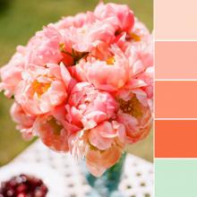 Color Love   Peach and Aqua