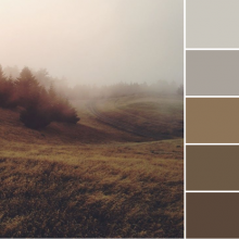 Color Love | Warm Grays & Browns