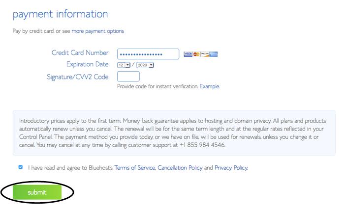 Bluehost Payment Information - Designer Blogs