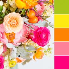 Color Love | Bright Green, Yellow, Orange & Pink