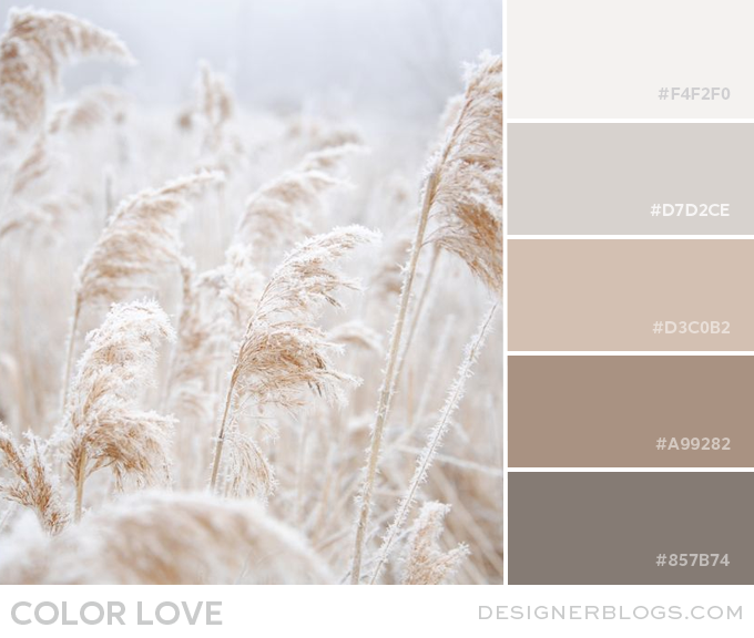 Soft neutral color schemes such as khaki, brown, taupe, white, ivory, beige and gray can produce a calming and comfortable atmosphere. In the context of design, neutral means without color. Using different shades of the same neutral color in design creates a classy and sophisticated look.