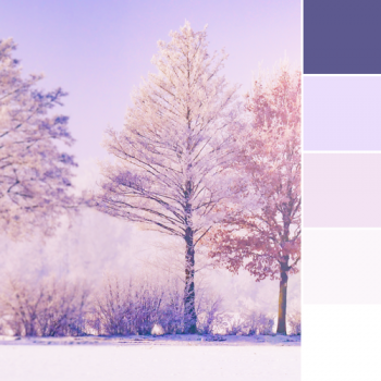Color Love | Winter Hues