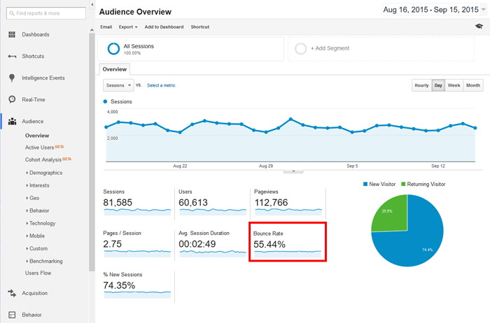 Google Analytics Bounce Rate Example