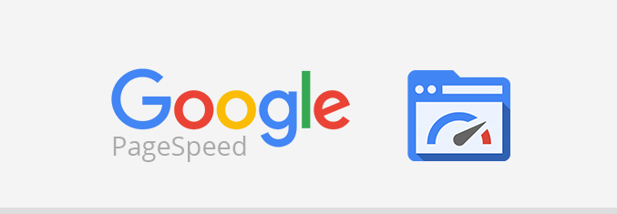 Google PageSpeed Graphic
