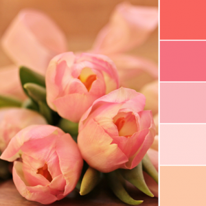 Color Love | Tulip Pink