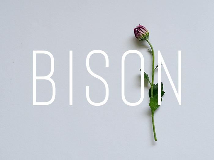 Ten Best Sans Serif Fonts - Designer Blogs