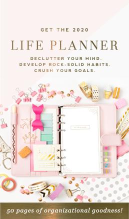 2020 Life Planner - DesignerBlogs.com