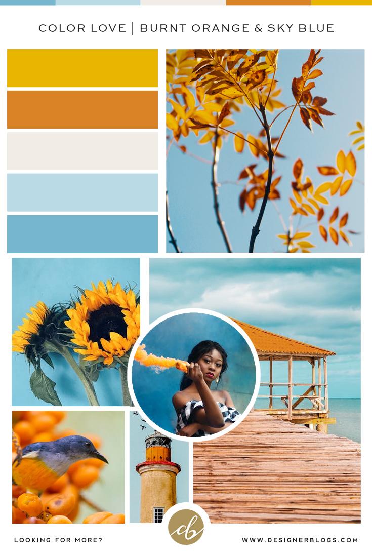 Color Love | Mustard, Burnt Orange & Sky Blue Color Palette
