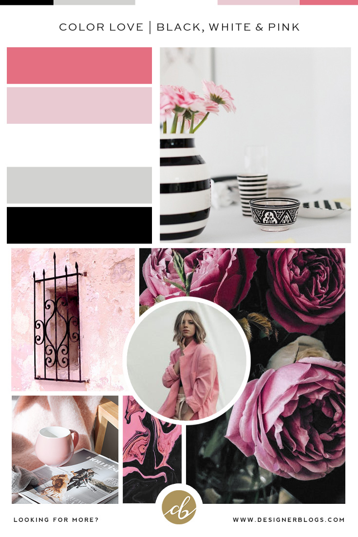 Black, White & Pink Color Palette